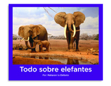 Todo sobre elefantes libro de non-ficcion All About Elephants Spanish book PK-1