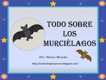 Todo sobre los murciélagos
