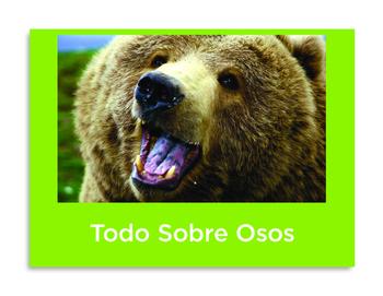 Todo sobre osos libro de non-ficcion All About Bears Spani