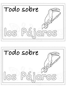 Todo sobre pajaros/All about birds