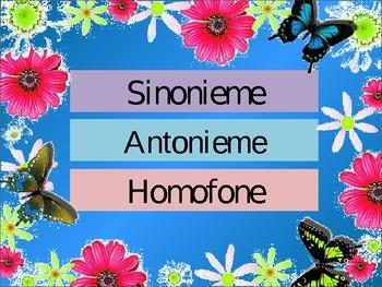 Toets my kennis van sinonieme, antonieme, homofone