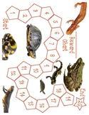 Token Reward Chart - Reptiles