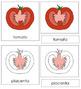 Tomato Nomenclature Cards