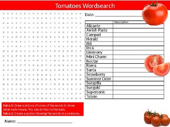 Tomatoes Wordsearch Sheet Starter Activity Keywords Food Nutrition