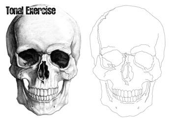 Tonal Drawing Exercise