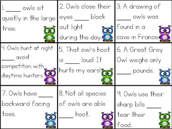 Too, To, Two Sort: Owl-Themed Homophone Practice