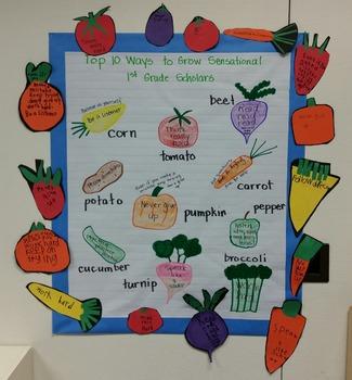 Top 10 Ways to grow Sensational 1st Grade Scholars.