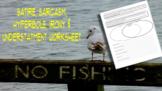 Figurative Language Worksheet: Satire, Sarcasm, Hyperbole, Irony, Understatement