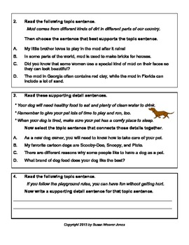 Topic Sentence, Main Idea, and Supporting Details