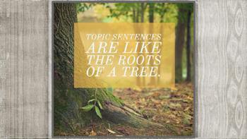 Topic Sentence Resource Mini Lesson