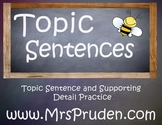 Topic Sentence and Supporting Detail