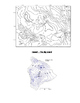 Topographic Maps for Beginners