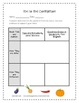 Tops and Bottoms Supplemental Activities 3rd Grade Journeys Unit 3, Lesson 12