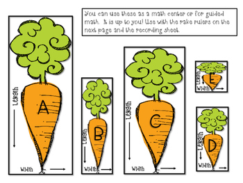 1st Grade-Tops and Bottoms, Vegetables, and Plants