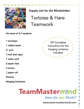 Tortoise & Hare Teamwork~how diversity helps build strong teams