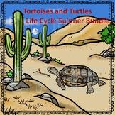 Tortoises and Turtles Life Cycle Spinner Bundle