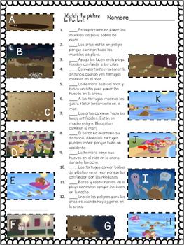 Tortugas Marinas/Sea Turtles Authentic Reading and Picture Matching+Kahoot!