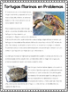 Tortugas Marinas/Sea Turtles Authentic Reading and Picture