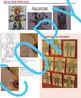 Totem Pole Art Lesson - Niki de Saint Phalle (common core) Social Studies