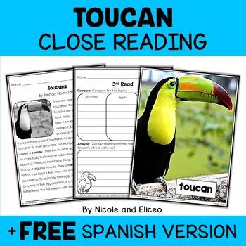Close Reading Toucan Activities