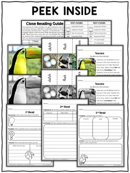 Close Reading Passage - Toucan Activities