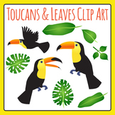 Toucan Birds and Jungle Leaves Clip Art for Commercial Use