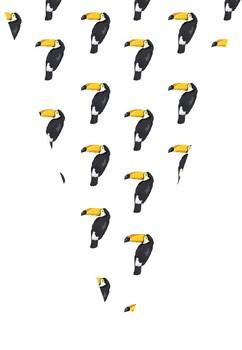 Bunting - Toucan Theme