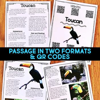 Toucan: Informational Article, QR Code Research & Fact Sort