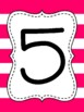 Touch Math Numbers {Hot Pink Thick Stripe}