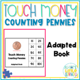 Touch Money Adapted Book - Counting Pennies - Special Education