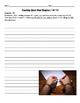 Touching Spirit Bear Chapters 14-28 Worksheet Pack