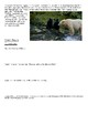 Touching Spirit Bear Kermode Bears (Spirit Bears) Informational Article