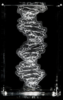 Tour Of The Basics:DNA