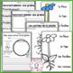 Les plantes (FRENCH Plants Worksheets and Activities)