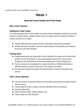 Tower Garden Kindergarten Curriculum