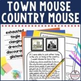 Town Mouse and Country Mouse Comprehension Activities in D