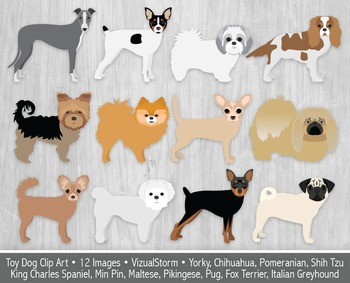 Cute Toy Dog Clip Art, 12 Hand Drawn Lap Dog Breeds, Adorable Dog Illustrations