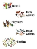 Toy & Manipulative Labels