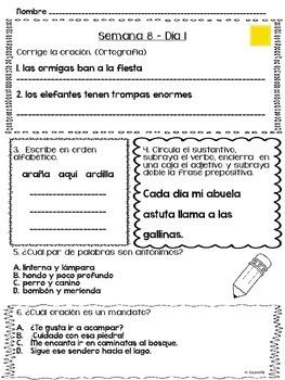 Trabajo diario de lenguaje - Semanas 5 - 8
