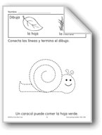 Trace/Complete: Snail
