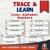 Trace and Learn Alphabet Writing Center Task Cards