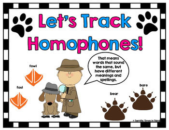 Tracking Homophones: Concentration Game, Poster, & Activities