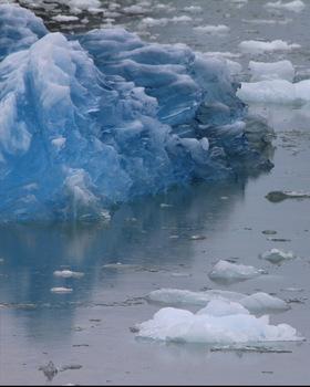 Tracy Arm Glacier Alaska Multiple Ice Bergs digital photos