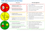 Traffic Light Assessment and Next Steps for PMLD and EYs