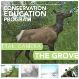 Trail Camera – The Grove