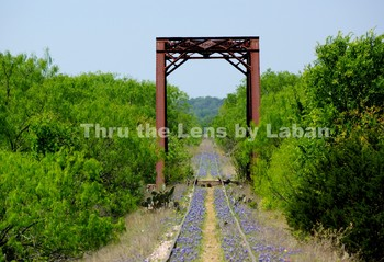 Train Track and Bridge Trestle Stock Photo #75