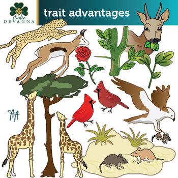 Trait Advantages