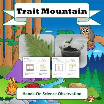 Traits Survival Biomimicry: Trait Mountain STEM Lesson Plans (NGSS 1-LS)