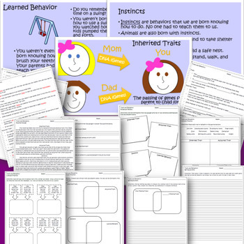 Traits/Heredity Bundle (Inherited/Acquired Traits-Instincts/Learned Behavior)