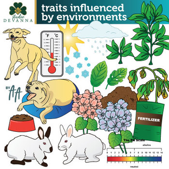 traits influenced by environments clip art by studio devanna tpt